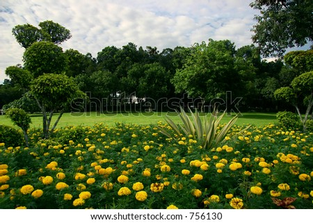 Park with field and trees on the horizon and a bed of flowers in the foreground