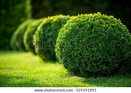 park with shrubs and green lawns, landscape design - Shutterstock ID 329291891