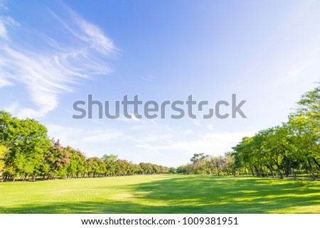 Stock Photo Park with sunshine day in the city recreation scene