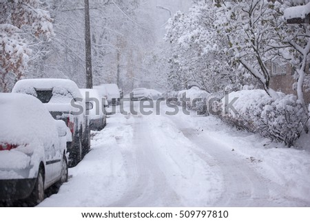 Parked cars covered with snow - snow storm #509797810