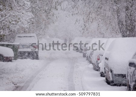 Parked cars covered with snow - snow storm