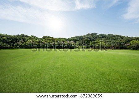 Parking Grassland