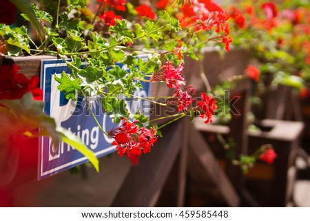 Parking road sign surrounded by flowers #459585448