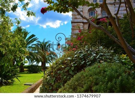 parks and vegetation in monaco #1374679907