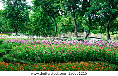 Parks Colourful Flowerbeds  flower yellow circle summer colour garden design formal public nature holiday winding blossom pathway weather walkway sunlight ornament outdoors  vacation beautiful.