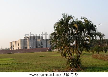 Dhaka Grass