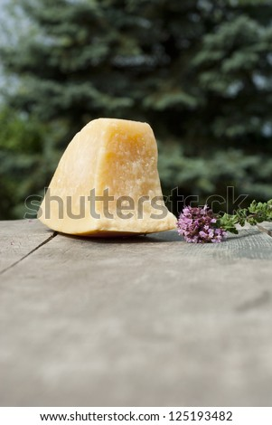 parmesan and fresh oregano flowers