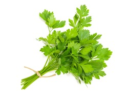 parsley bunch tied with cord isolated on white background