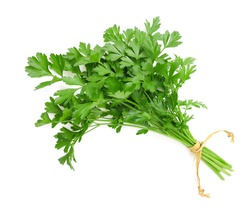 parsley bunch tied with ribbon isolated on white background