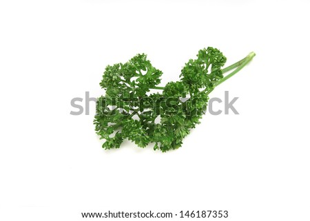 parsley isolated in white background