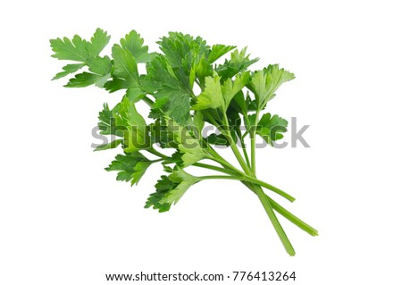 Parsley isolated on a white background with a clipping path
