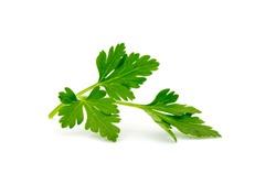 parsley isolated on white