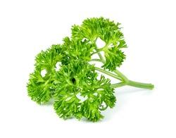 Parsley leaf or Petroselinum crispum leaves isolated on white background ,Green leaves pattern