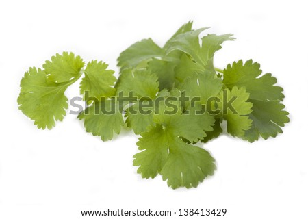 Parsley leaves on white isolated background, closeup