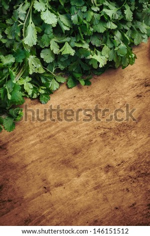 Parsley on chopping board