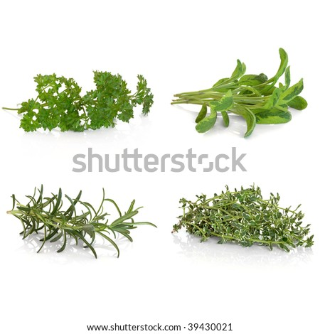 Parsley, sage, rosemary and thyme herb leaf selection, over white background.