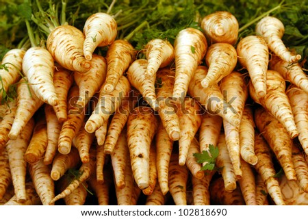 Parsnip on display in the market.