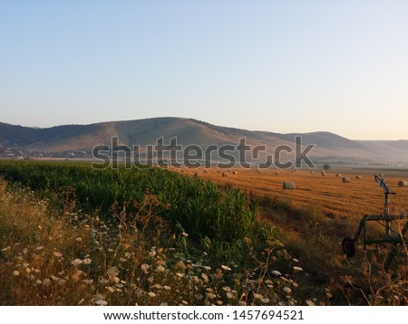 Part of a hose-reel irrigation machine aside. A huge field with straw balls, spread all over a field in background. During the summer, Kozani, Greece. #1457694521