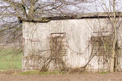 Part of a small dilapidated wooden shed on the farmland