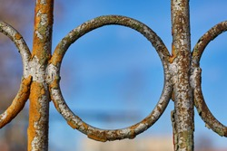 part of an old fence - close-up