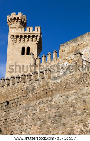 Part of Mallorca cathedral, in Palma de Mallorca, Spain