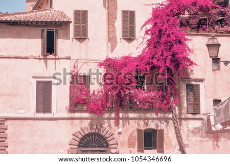 Part of the facade of the old building with a balcony with a mini garden photographed with an infrared filter