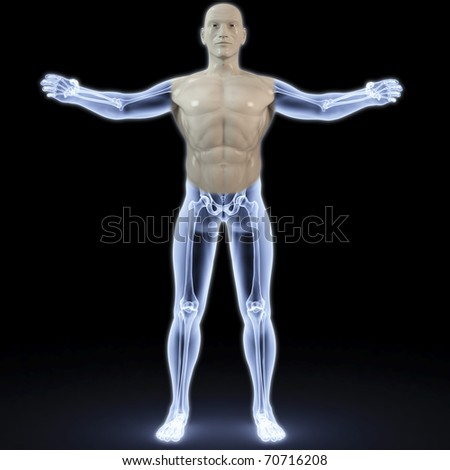 part of the male body under X-rays. 3d image.