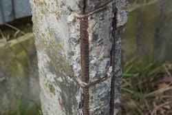 part one gray concrete broken pillar with rusty brown reinforcement rods in the street