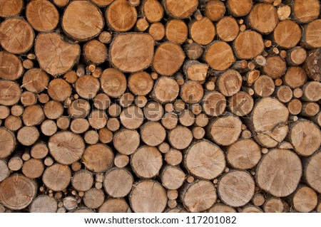 particular of lumber ready to be burned
