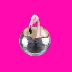 Party collage. Concept Coconut disco ball and flamingo on pink background.