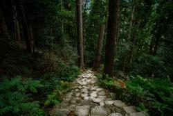 Passage leading to Hiro Shrine and Nachi Waterfall, part of the Kumano Nachi Taisha complex on Kumano Kodo route, UNESCO- Sacred Sites and Pilgrimage Routes in the Kii Mountain Range, Nachi, Wakayama