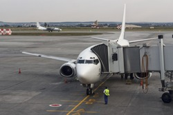 Passenger plane in the airport . Aircraft maintenance.