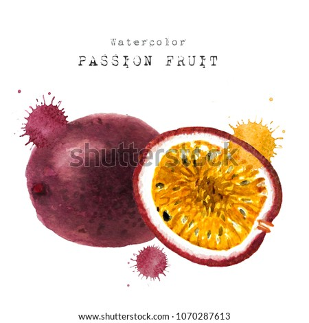 passionfruit watercolor fresh slice cut passion fruits. Hand drawn sketch watercolour painting on white background. illustration of Set organic food diet passionfruit.