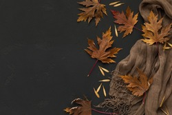Pastel autumn colors. Brown scarf with autumn fallen leaves on black background with copy space for text