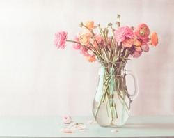 Pastel pink ranunculus flowers bouquet in glass jug on table, front view