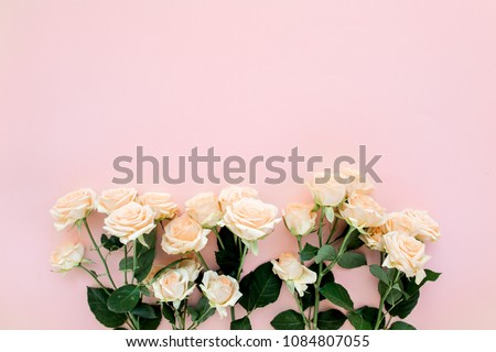 Pastel tea rose flowers on pink background. Floral background. Minimal floral concept. Flat lay, top view.    #1084807055