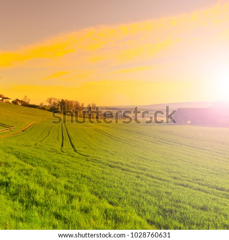 Pasture on the background of Alps in Switzerland at sunrise. Swiss small village at the foot of mountains surrounded by meadows in the morning mist #1028760631