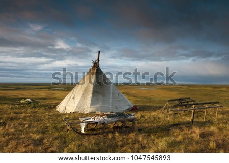 pastures reindeer, House in the tundra