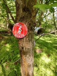Patapsco Valley Hiking Trail Marker