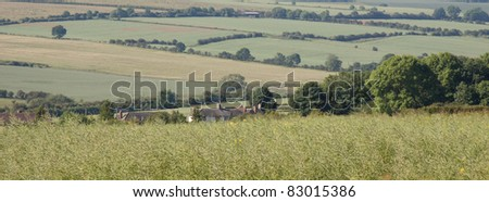 patchwork fields of the English countryside in summer.  panoramic view