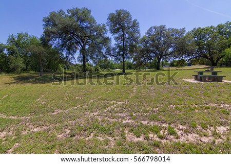 patchy grass and a concrete picnic table in a park