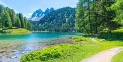 Path  across the lake. Wild meadow flowers. Forest landscape in summer. Walk in the canton of Grisons.