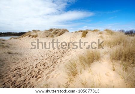 path between sand dunes in Netherlands