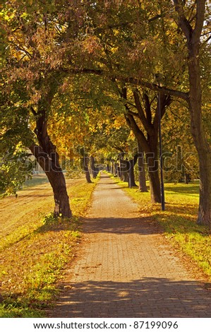 Path between the terrs, beautiful Autumn scenery