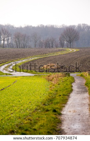 path field meadow autumn #707934874