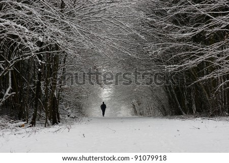 Path in a thick forest in winter- trees covered with snow and a man walking