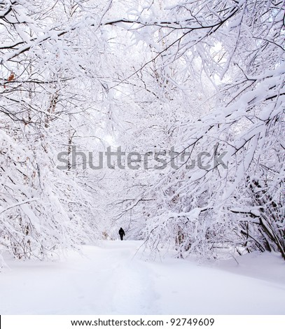Path in a winter deep forest - trees covered with snow and a man walking in distance