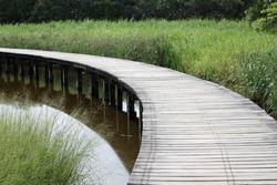 Path in Hong Kong Wetland Park
