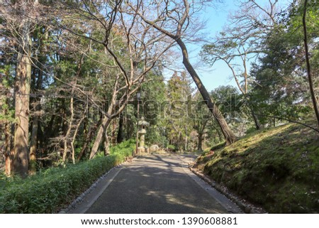 Path in Narita Park surrounded by trees. #1390608881