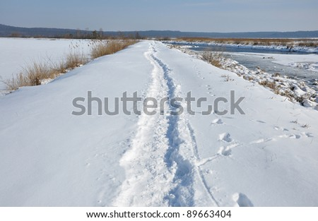 Path in sunny, cold winter day, Ukraine